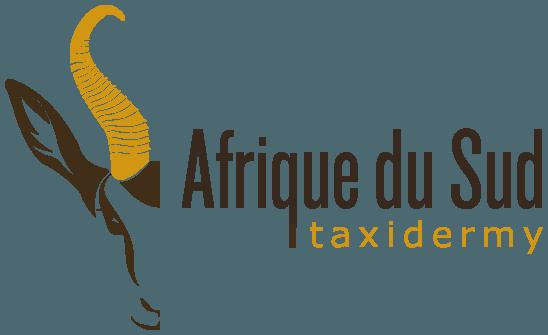 Afrique du Sud taxidermy